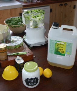 Pesto Ingredients - keeping it simple.