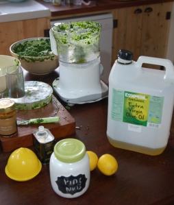 Pesto Ingredients - keeping it simple.