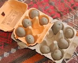 Chitting the Potatoes